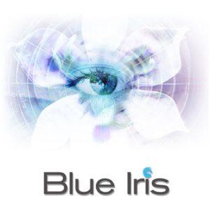Blue Iris 5.3.6.5 Crack